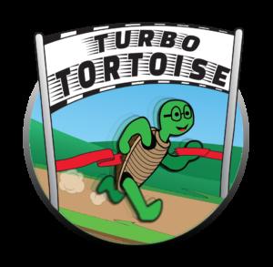 Turbo Tortoise Attention Assessment